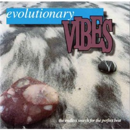Evolutionary Vibes I - The Endless Search for the Perfect Beat